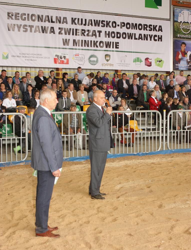 Piotr Kowol, sędzia, rozpoczyna ocenę bydła w czasie Regionalnej Kujawsko-Pomorskiej Wystawy Zwierząt Hodowlanych w Minikowie. Asystuje mu  Paweł Przybylak.