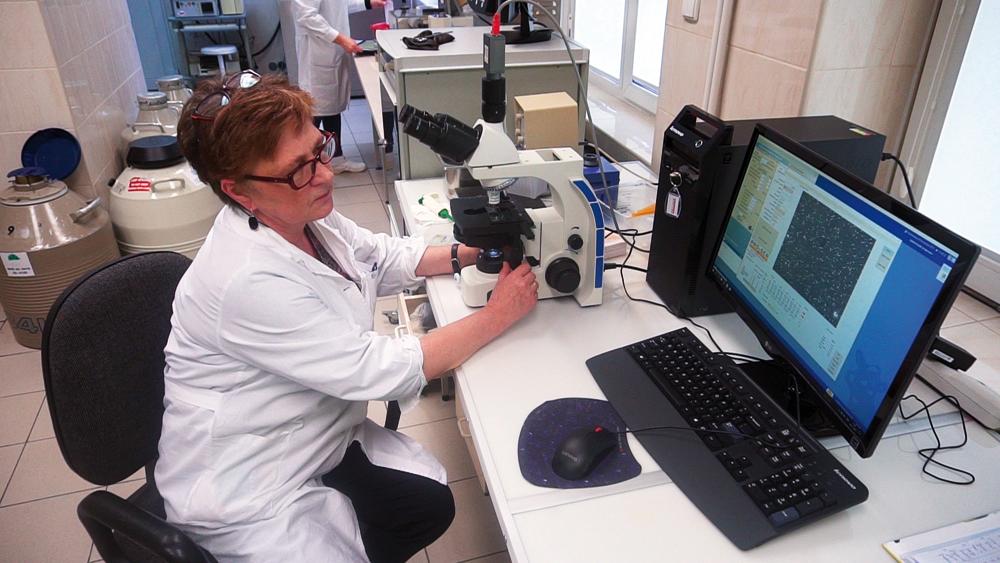 Weryfikacja ejakulatu i plemników w systemie CASA to warunek przekazania nasienia do produkcji