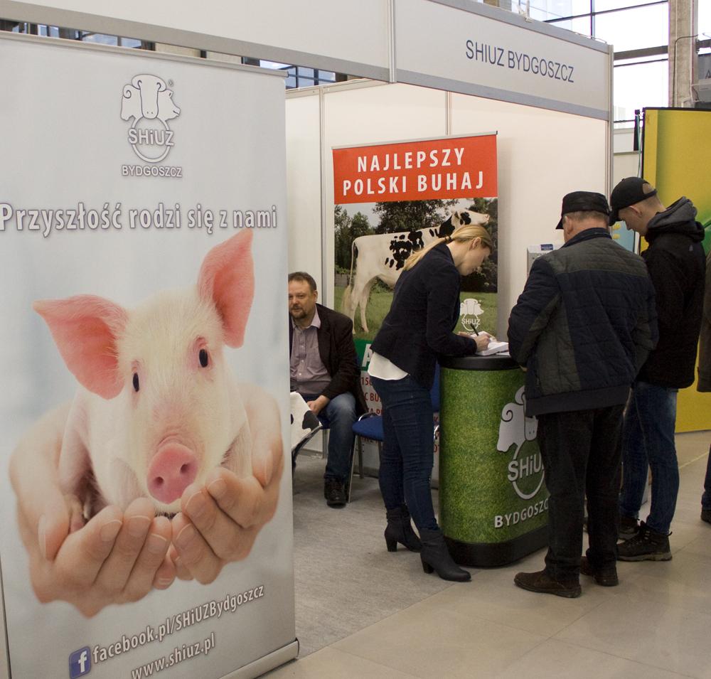 Targi AgroShow 2019, Ostróda