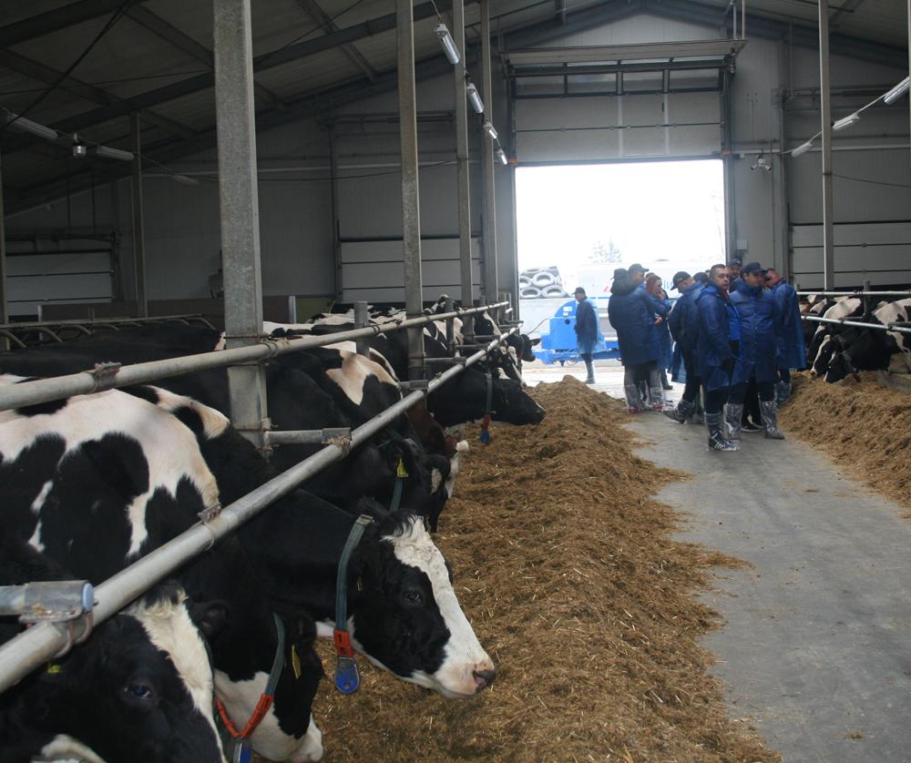 Konferencja Zarządzanie rozrodem bydła na podstawie informacji uzyskiwanych z oceny wartości użytkowej bydła